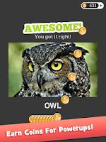 Screenshot of Eye Know: Image FX Word Quiz