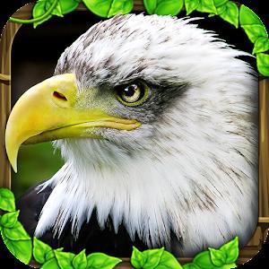 Eagle Simulator™ for PC and MAC