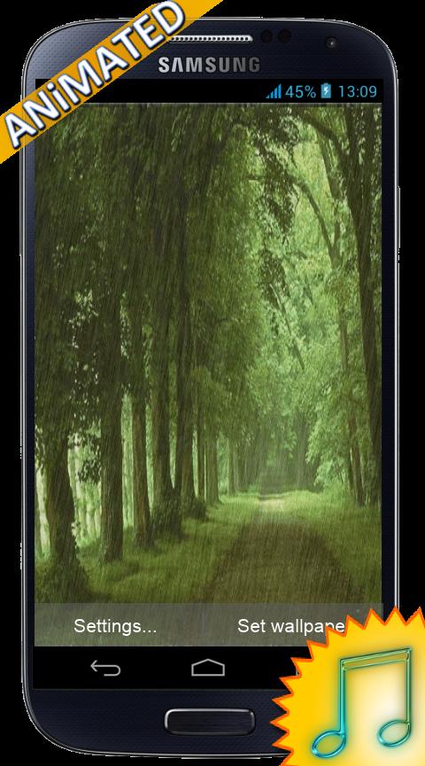 animated rain forest