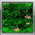 Fish Tank 3d Live Wallpaper icon