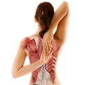 Upper Back Pain Neck Shoulders icon