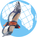 African Raptor Observations icon