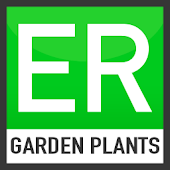 Easy Recorder Garden Plants