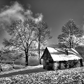 by Jeno Major - Black & White Landscapes (  )