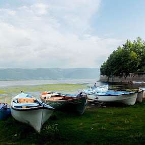 by Gokhan Demirci - Nature Up Close Water ( lake )