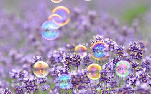 Bubble Wallpaper HD