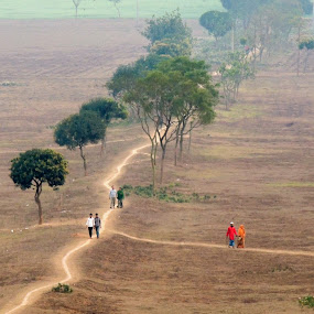 Beauty of Nature by Topu Saha - Landscapes Travel ( field, bangladesh, nature, beautiful, beauty, savar, dhaka,  )