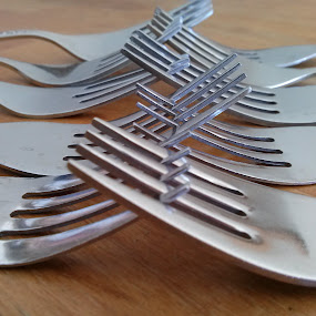 Eight Forks by Tina French - Artistic Objects Other Objects ( kitchen utensil, silverware, cutlery )
