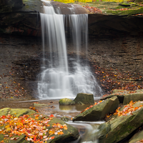 Blue Hen Falls by Kenneth Keifer - Landscapes Waterscapes ( stream, splash, colorful, cuyahoga, waterfall, moss, falling, rock, valley, yellow, blur, leaves, landscape, usa, hiking, ledge, ohio, nature, autumn, foliage, creek, richfield, long exposure, gold, wet, motion, water, orange, boulders, park, green, midwest, forest, woods, blurred, national park, wilderness, red, splashing, color, cascade, fall, cascading, cataract, brecksville, blue hen, whitewater, hike )