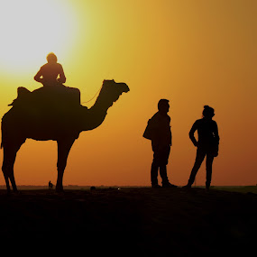 Young tourist at Jaisalmer sand dunes by Udhay Krishnamurthy - People Couples ( rajasthan, india, travel )