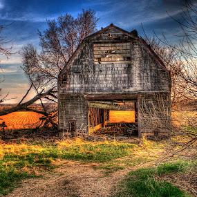 Final Harvest by John Larson - Landscapes Prairies, Meadows & Fields ( field, clouds, sky, barn, grass, trees )
