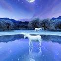 Unicorn Lake Trial