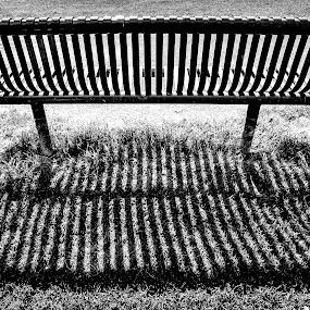 Bench by Ian Yates ヅ - City,  Street & Park  City Parks