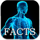 Human Body Facts icon