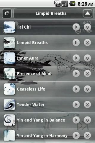 Calming Music to Simplicity - screenshot