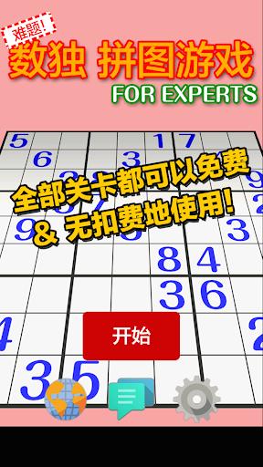 难题 数独 拼图游戏 FOR EXPERTS