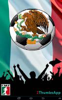 Screenshot of Soccer Mexican League