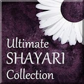 1000+ Shayri Collection