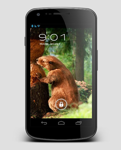 Forest Animals Beaver LiveWP