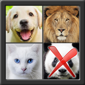 4 Pics 1 Different for PC and MAC