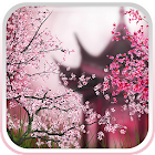 Sakura Live Hintergrund icon