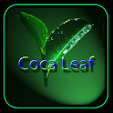 Planta de coca icon