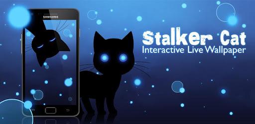 Stalker Cat Wallpaper