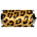 Leopard Skin Battery Widget logo