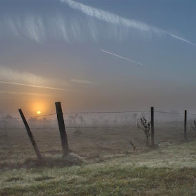 Sun Up by Rich Eginton - Landscapes Prairies, Meadows & Fields ( clouds, field, fence, barbed wire, fogm, sunrise )