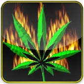flaming marijuana leaf lwp