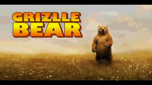 Grizlly Bear
