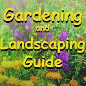 Gardening and Landscaping Book