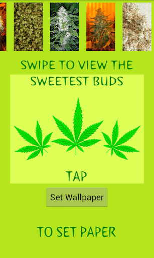 Weed Wallpapers HD3D
