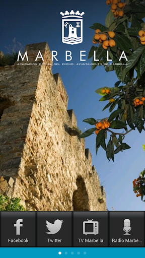 Ayuntamiento Marbella