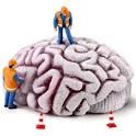N-back IQ Game Brain B Premium icon