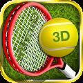 Tennis Champion 3D - Online Sports Game download