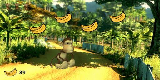 Jungle Fun Monkey