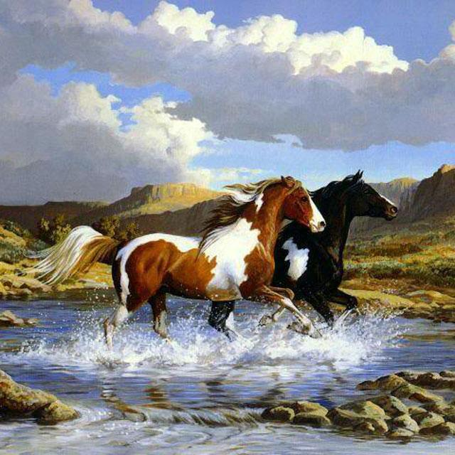 Horses Jigsaw Puzzles- screenshot
