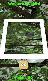 Camera Birds™- screenshot thumbnail