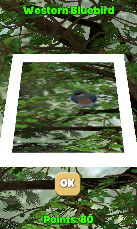 Camera Birds™ - screenshot