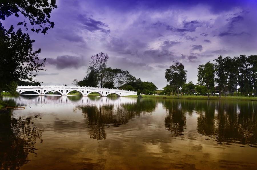 Chinese Garden Bridge by Paul Martin - City,  Street & Park  City Parks ( sky, violet, bridge, singapore, chinese garden )