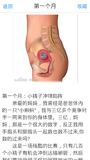 玩健康App|孕期变化免費|APP試玩