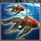 Magic Slide Puzzle A Fishes 1