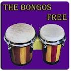 Bongo drum icon