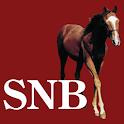 Saratoga National Bank icon