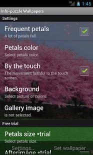 Cherry blossoms- screenshot thumbnail