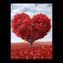 اجمل اشعار الحب ٢٠١٤ icon