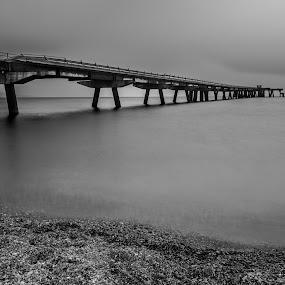 Pier by Vincenzo Bernardi - Black & White Landscapes ( waterscape, sea, pier, seascape, landscape, italy, black and white, b&w,  )