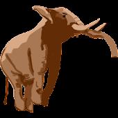Jon Elephant