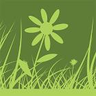 Green Square icon